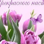 Оксана Сас (masla) - Ярмарка Мастеров - ручная работа, handmade
