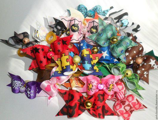 бантики для собак цветные с принтами