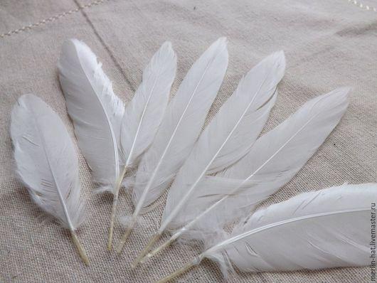 Другие виды рукоделия ручной работы. Ярмарка Мастеров - ручная работа. Купить Перья утиные не  крашеные 10-15 см.. Handmade.