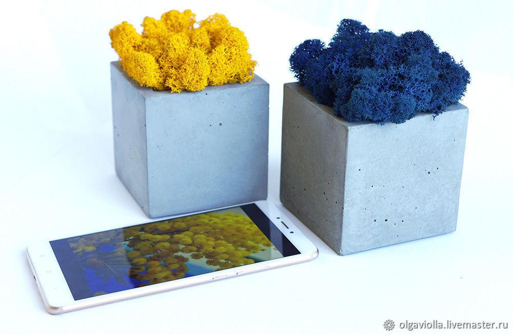 Набор бетонных кашпо со мхом ягель синего цвета и жёлтого цвета, Кашпо, Москва,  Фото №1