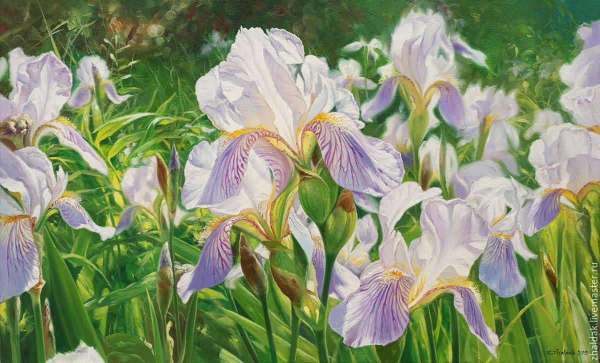 the painting 'Irises', Pictures, Rostov-on-Don,  Фото №1