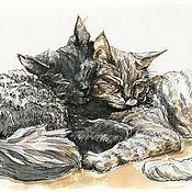 Pictures handmade. Livemaster - original item I will draw a portrait of your cat. Handmade.