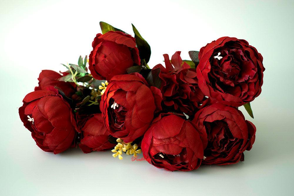 цветы пионы бордовые фото это время