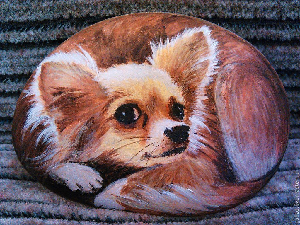 Рисунки на камнях собаку