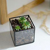 Цветы и флористика handmade. Livemaster - original item Mini - Floriana Cube. Handmade.