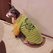 handmade. Livemaster - original item Clothing for cats t-Shirt