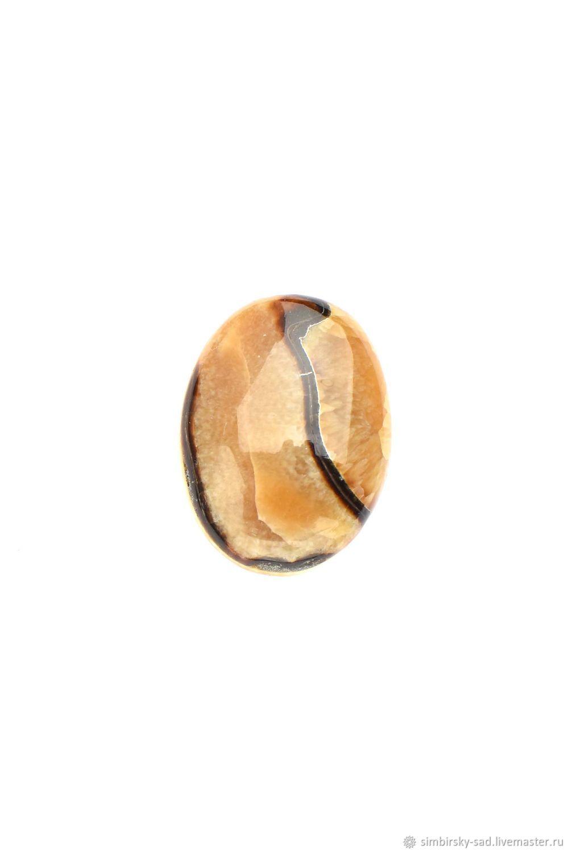 Для украшений ручной работы. Ярмарка Мастеров - ручная работа. Купить 5192 Аммонитовые кабошоны. Handmade. Желтый, кабошон, кабошоны