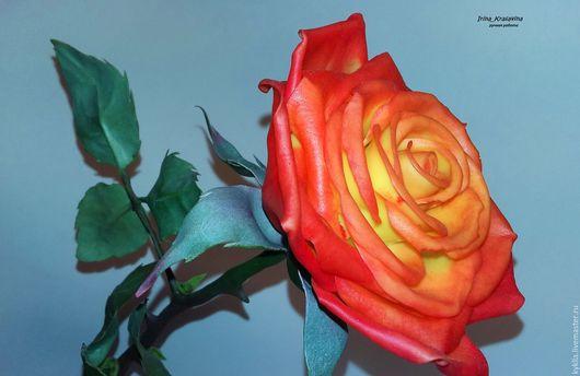 Цветы ручной работы. Ярмарка Мастеров - ручная работа. Купить Роза из полимерной глины. Handmade. Ярко-красный, желтый