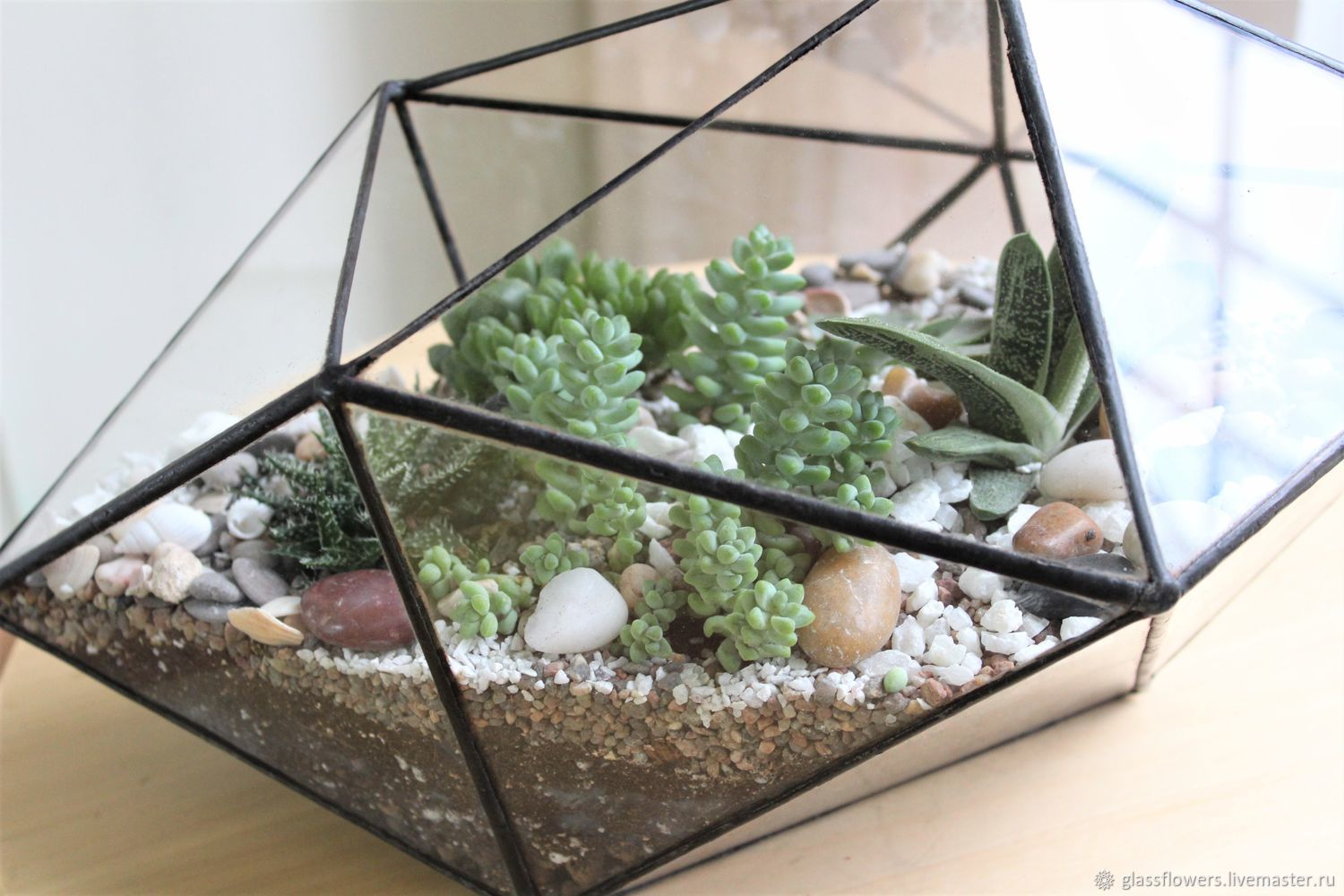 The Floriana crystal with succulents, Florariums, St. Petersburg,  Фото №1
