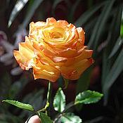 "Цветы ручной работы. Ярмарка Мастеров - ручная работа Роза "" Confetti "". Handmade."