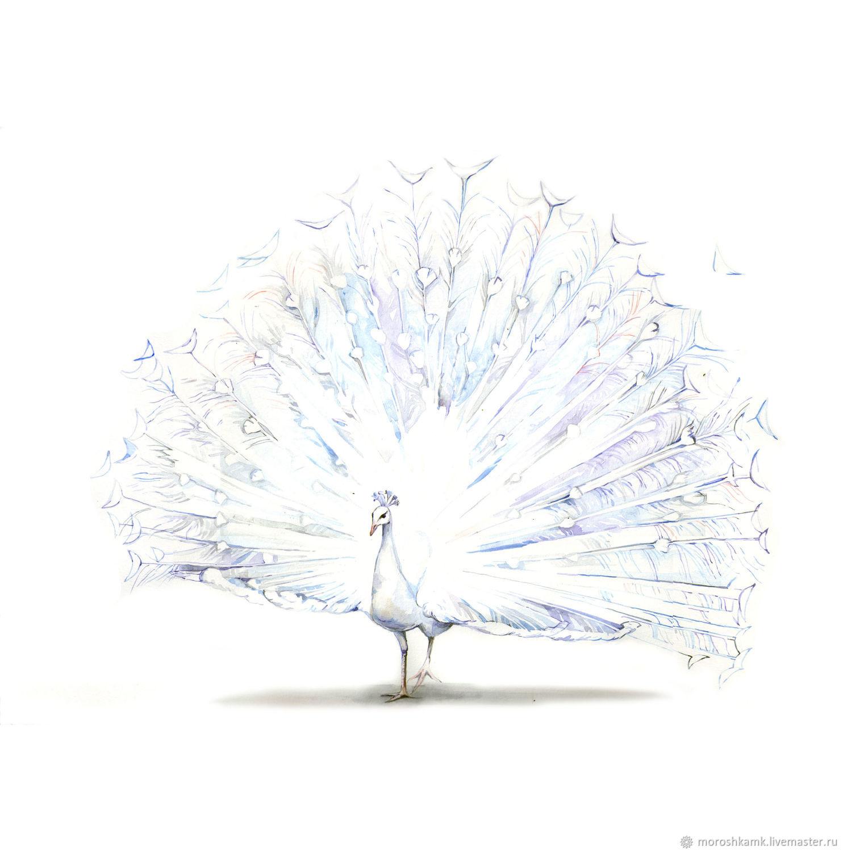 Животные ручной работы. Ярмарка Мастеров - ручная работа. Купить Белый павлин. Handmade. Природа, белый, картина, рисунок, птица