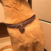 Зоотовары handmade. Livemaster - original item Collar