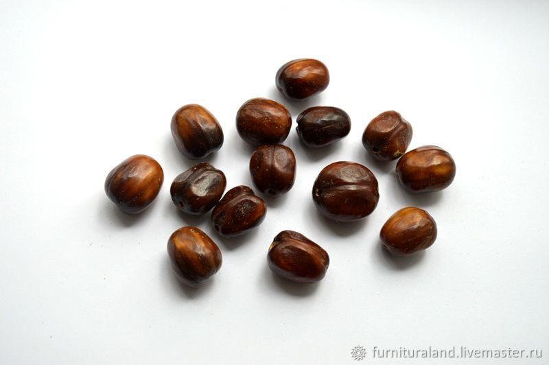 Бусины из экзотических семян, Бусины, Коломна,  Фото №1