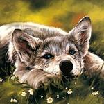 Марина (wolf-cub) - Ярмарка Мастеров - ручная работа, handmade
