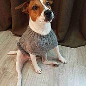 Для домашних животных, ручной работы. Ярмарка Мастеров - ручная работа Кофта вязаная для собак джек рассел йорк чихуа той-терер. Handmade.