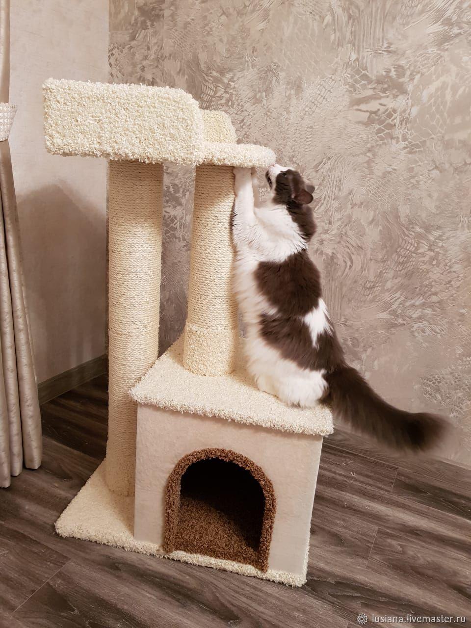 картинки домов для кошек по шагово монастырском заточении соломония