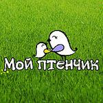 """""""Мой птенчик"""" - Ярмарка Мастеров - ручная работа, handmade"""