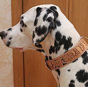 Для домашних животных, handmade. Livemaster - original item Collar for dogs made of genuine leather, personalized harnesses for dogs. Handmade.