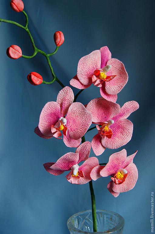 Цветы ручной работы. Ярмарка Мастеров - ручная работа. Купить Орхидея Фаленопсис. Handmade. Кремовый, Холодный фарфор