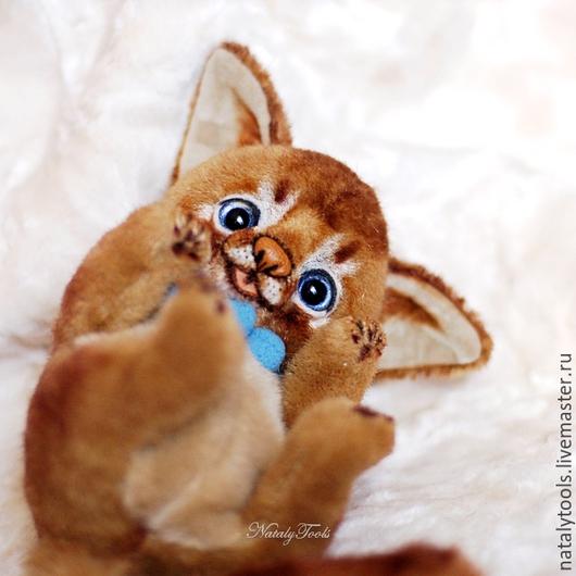 Мишки Тедди ручной работы. Ярмарка Мастеров - ручная работа. Купить Аби котенок Diego. Абиссинские кошки. Коллекционная игрушка. Handmade.