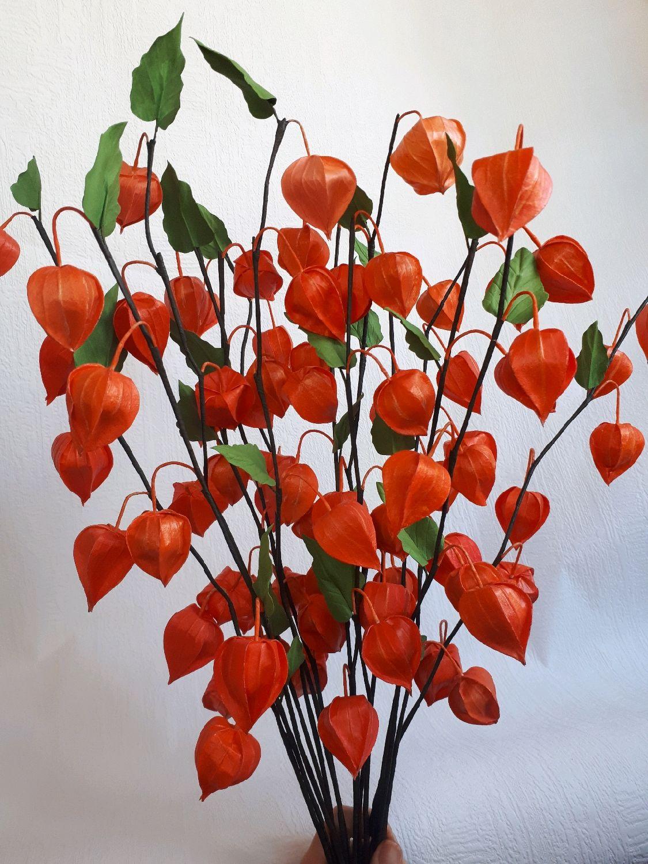 Физалис из фоамирана, Цветы, Ульяновск,  Фото №1