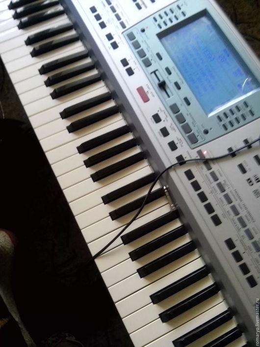 В том числе на синтезаторе, сочиняю и записываю.