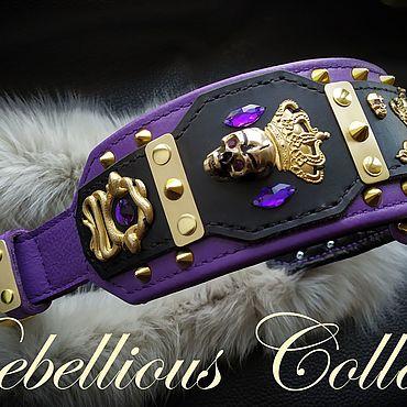 Для домашних животных, ручной работы. Ярмарка Мастеров - ручная работа Ошейник для собак Imperial Krait. Handmade.