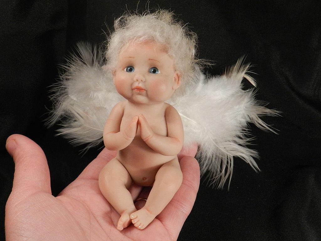 картинки смешной ангел царит здоровая атмосфера