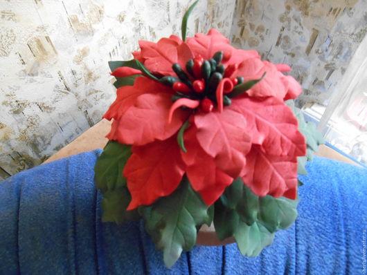 Интерьерные композиции ручной работы. Ярмарка Мастеров - ручная работа. Купить Пуансеттия – рождественская звезда(цветок в горшочке). Handmade.