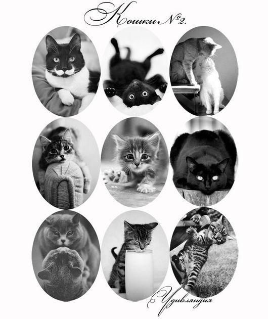 Для украшений ручной работы. Ярмарка Мастеров - ручная работа. Купить Кабошоны и картинки для кабошонов «Кошки» с фотопечатью №32.. Handmade.