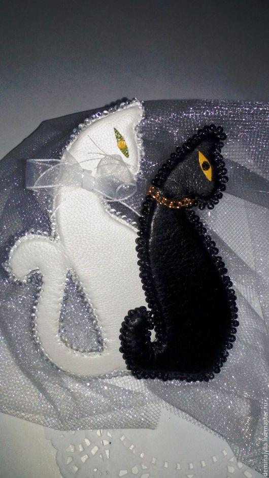кошка, кот, котенок