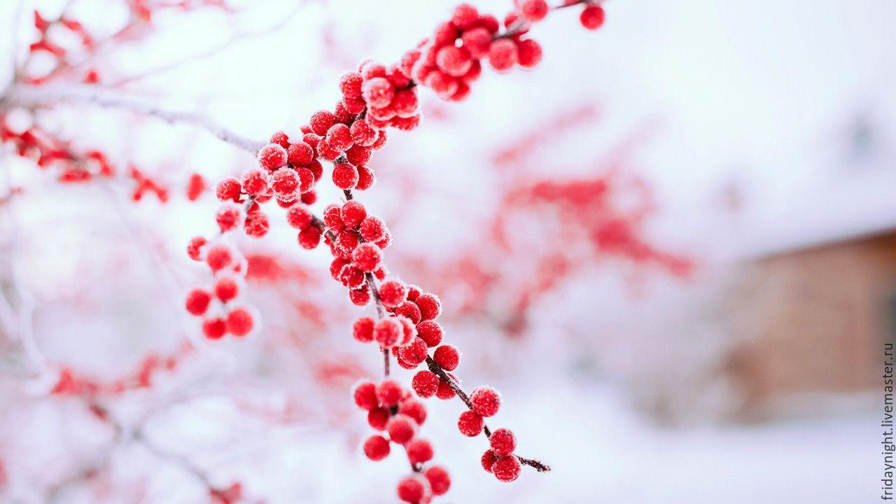 Браслет Ice Red Berry