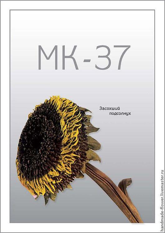 МК-37 Засохший подсолнух