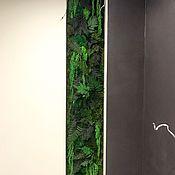 Картины и панно handmade. Livemaster - original item Fotokartin of stabilized moss and plants. Handmade.