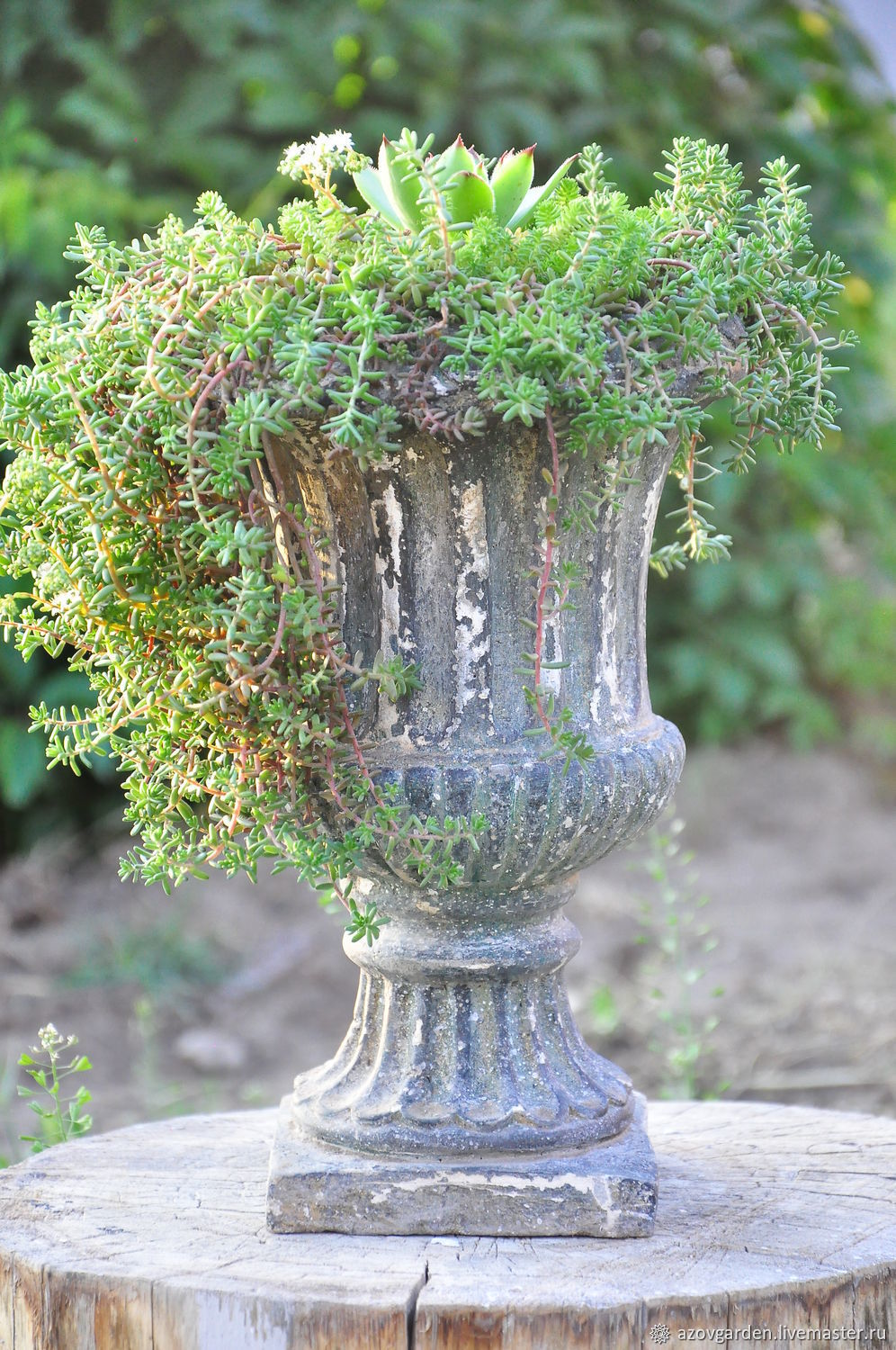 Concrete flowerpot aged on the leg for the garden, street flowerpot, Flowerpots are garden, Azov,  Фото №1
