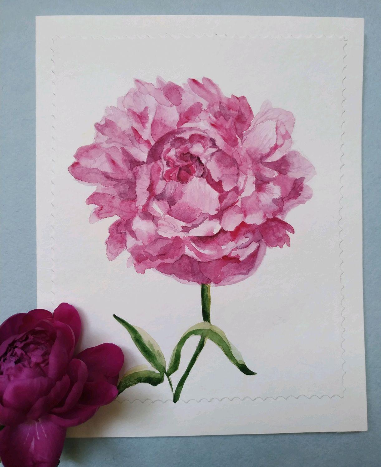 Любовным посланием, цветок пион на открытку