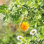 Картины и панно handmade. Livemaster - original item Summer. The sun.Dandelion. photo picture. Handmade.