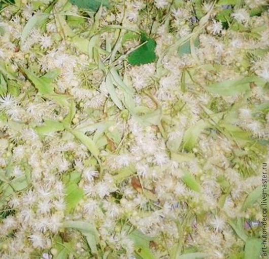 Душистый липовый цвет ручной сборки для чаев, травяных сборов и натуральной косметики. Травы 2016 года.