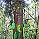 """Ловцы снов ручной работы. Ярмарка Мастеров - ручная работа. Купить """"Зов Леса"""" - ловец снов из природных материалов, лес, деревья, зелёный. Handmade."""