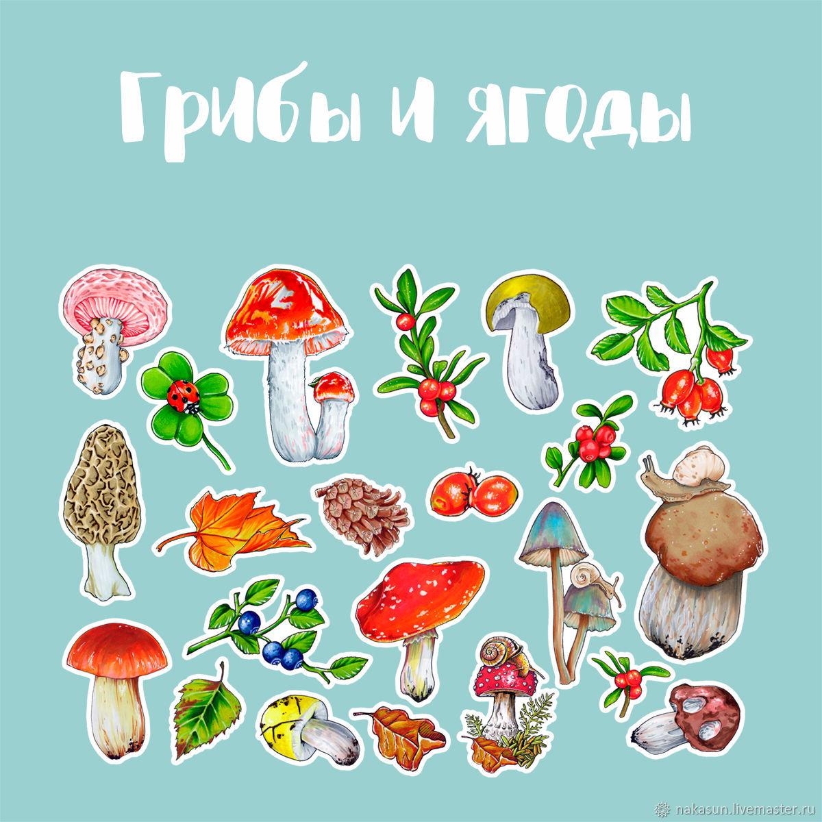 Про грибы открытки с