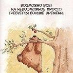 mila_ermak (milaermak) - Ярмарка Мастеров - ручная работа, handmade