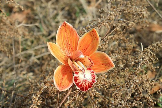 Заколки ручной работы. Ярмарка Мастеров - ручная работа. Купить Заколка-зажим с рыжей орхидеей.. Handmade. Оранжевый