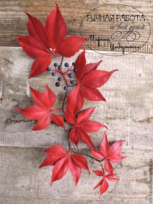Виноград из фоамирана. Девичий виноград из ревелюра, цветы из фома, листья из фоамирана, фоамиран, фом эва, интерьерные цветы, интерьер,  цветы на заказ, Марьяна Цыбульская