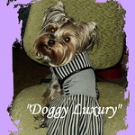 """Doggy Luxury"" - Ярмарка Мастеров - ручная работа, handmade"