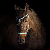 """Для домашних животных, ручной работы. Ярмарка Мастеров - ручная работа недоуздок для лошади """"Небесный изумруд"""".. Handmade."""