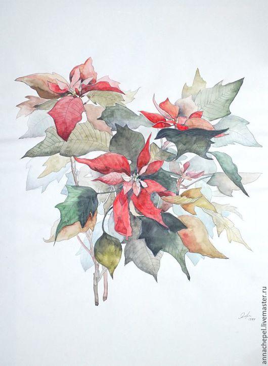 Рождественская звезда — Пуансеттия. Анна Чепель. 35 x 25 см., бумага,акварель, тушь, 1999. Изображение красно-зелёных листьев пуансеттии на тонированном фоне светло-желтого оттенка.