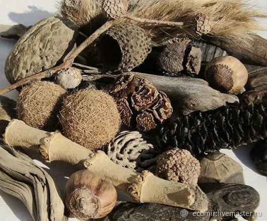 Морские элементы Дрифтвуд Арт декоративные (микс) 500г, Природные материалы, Анапа,  Фото №1