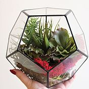 Цветы и флористика handmade. Livemaster - original item The Floriana with artificial succulents. The dodecahedron with succulents. Handmade.