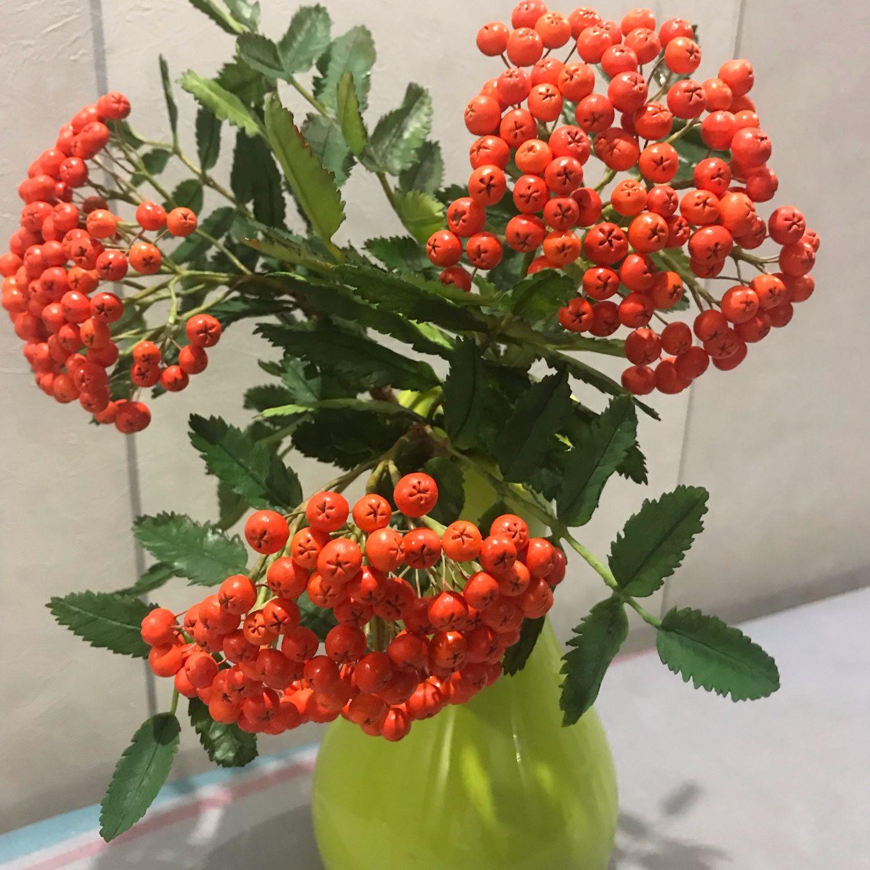 Рябина в вазе, Цветы, Москва, Фото №1