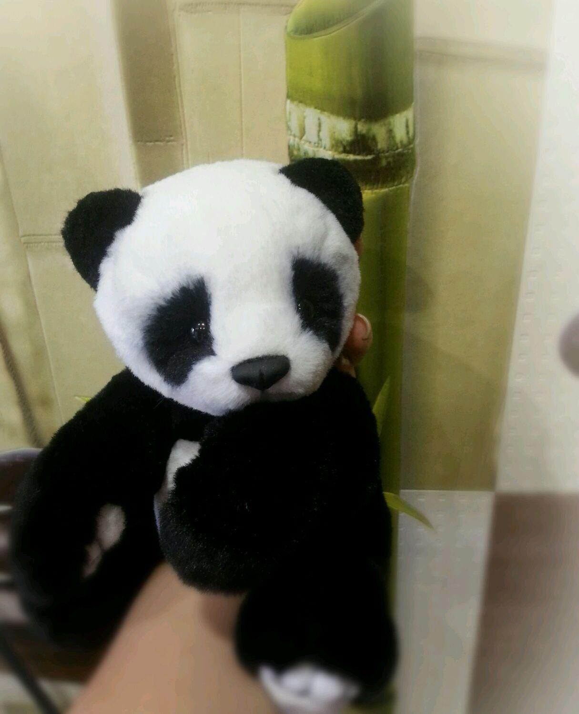 Baby Panda (Teddy), Stuffed Toys, Moscow,  Фото №1